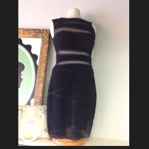 Tadashi Dress with Sheer panels